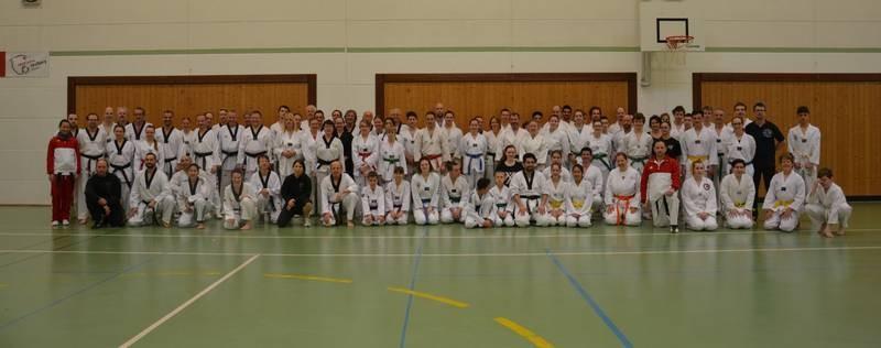 Taekwondo TV-Seulberg Breitensportlehrgang 2017